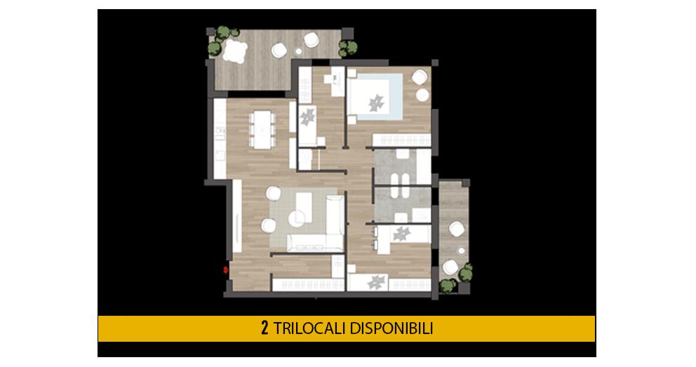 petrea9-trilocali_1